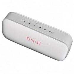Haut-parleur DUST DU-H3600...